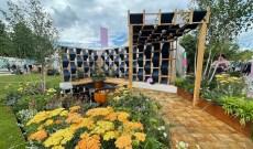 RHS Garden Plants Awareness for Denim's Eco Impact