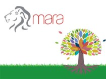Mara Group Looks to Raise $100M to Launch African E-Commerce Platform
