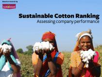 New Report Ranks Sustainable Cotton Programs