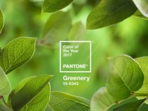 Pantone Selects Greenery as 2017's Color of the Year