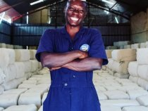 Cotton in Africa is Getting More and More Sustainable