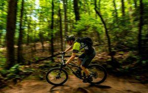 Mountain biking in the Asheville area