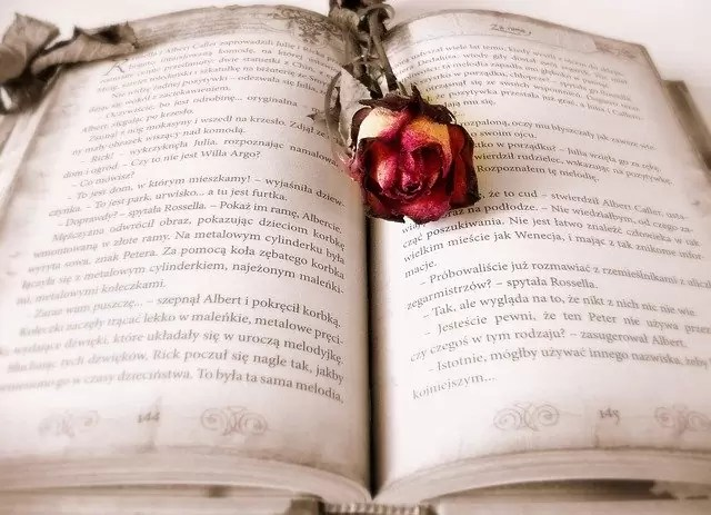 book, reading, love story