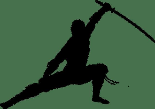 silhouette, ninja, warrior