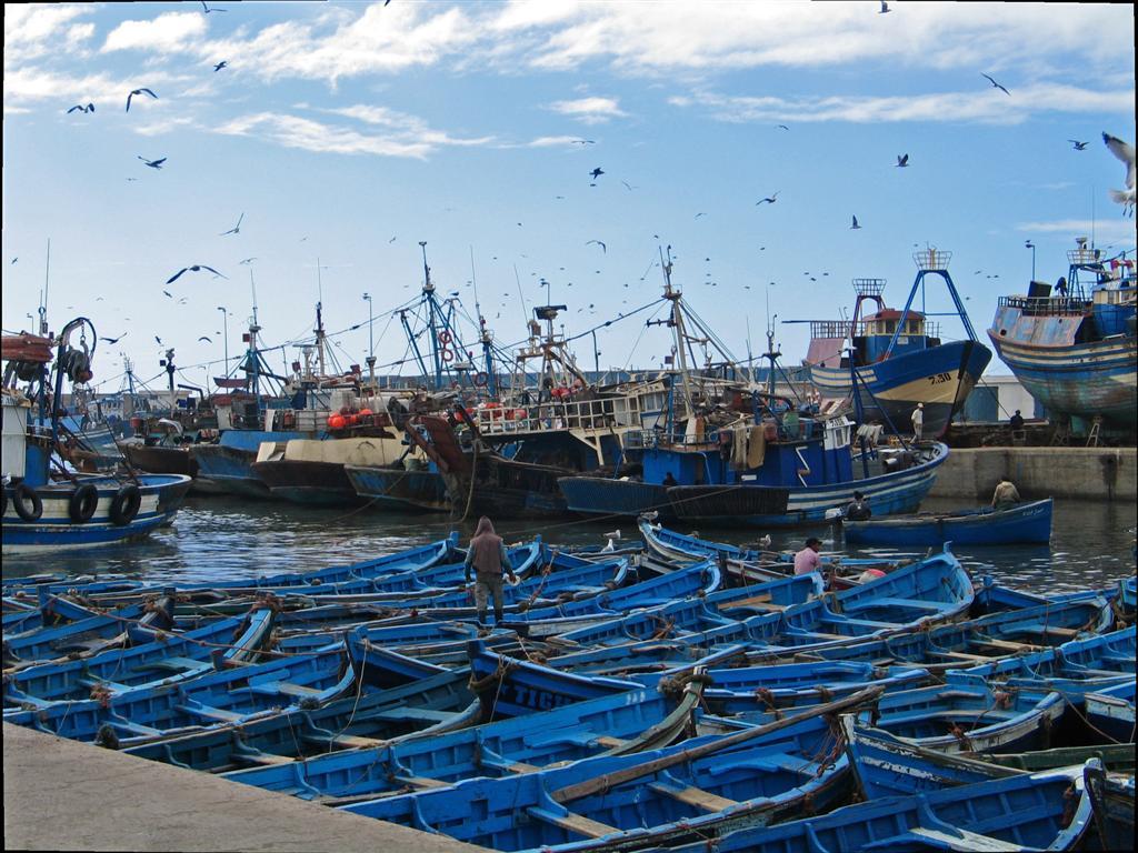 خطة أمنية جديدة بميناء أكادير