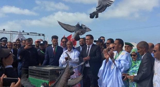 عدو ريفي وسباق للهجن وخيمة شعر  ومعارض في مهرجان أكبار ببوجدور