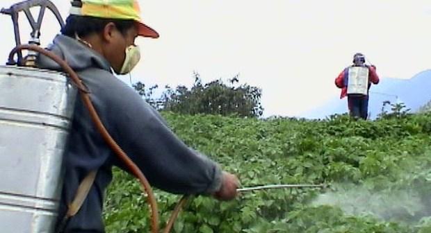 اشتوكة: الكبريت ينهي حياة عامل زراعي بضيعة فلاحية