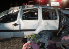 حمار يتسبب في حادثة سير وفي إصابة ركاب طاكسي