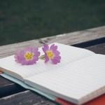 ノートにつけている日記をライフログに変更