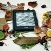 【Kindle】小学館の本がすべて50%ポイント還元キャンペーン