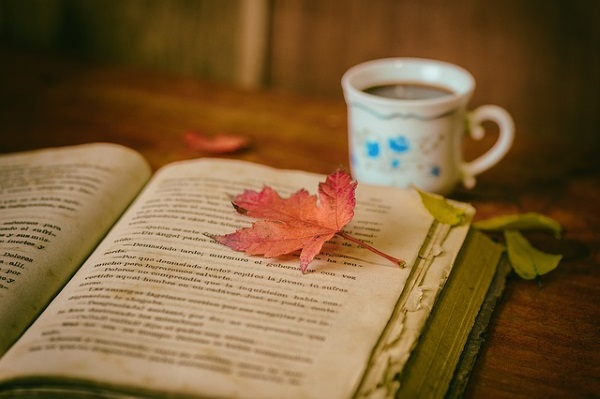 book & leaves