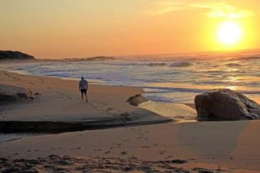 tn_Contents Sunrise Pn the Beach _MG_7910 Copy