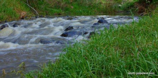 Franklin-River-Reserve (1)