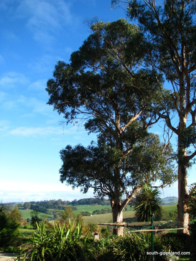 Loves-Lane-Cottages (35)