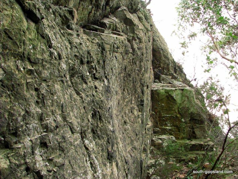 Mount-Nicoll (5)