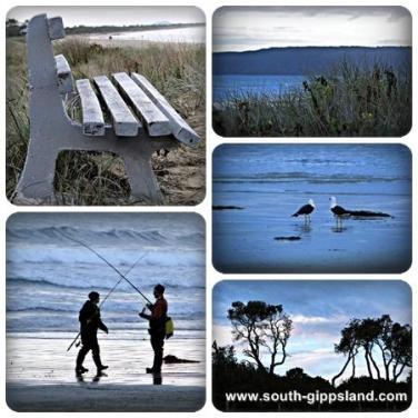 Waratah Bay beach, seagulls, fishing, timber bench and sunset