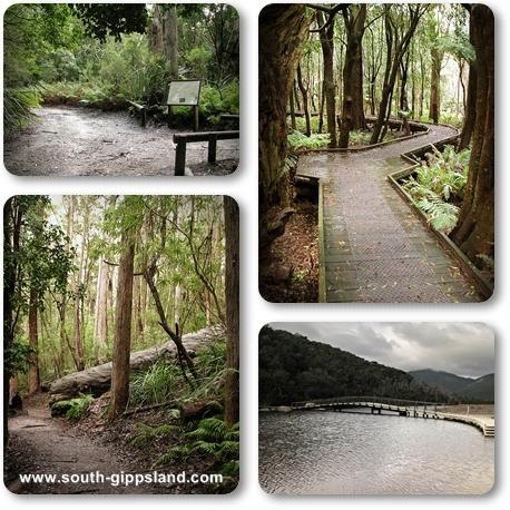 A collage of photographs of scenery and walking tracks taken at Wilsons Prom National Park