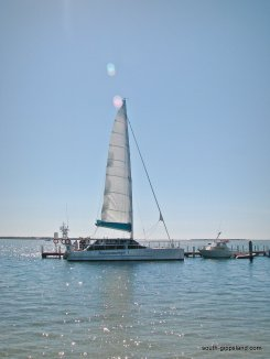 sailing-port-albert (25)