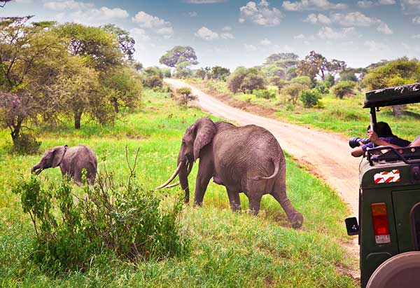 Embracing Domestic Tourism in Africa