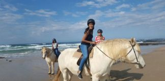 Selsdon Park Estate Horse Riding
