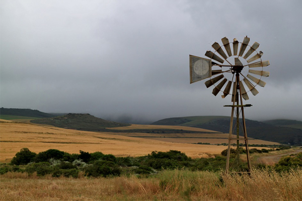 346 farm attacks and 46 farm murders in SA since 1 Jan 2018