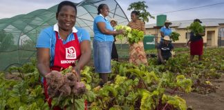 Bushbuckridge-Mpumalanga-charity