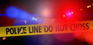 Elderly owners of Seaview lion park ambushed, assaulted, robbed, Port Elizabeth