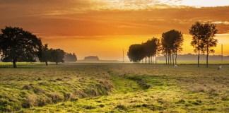 Informal settlement jeopardises property values, Vanes Estate, Uitenhage