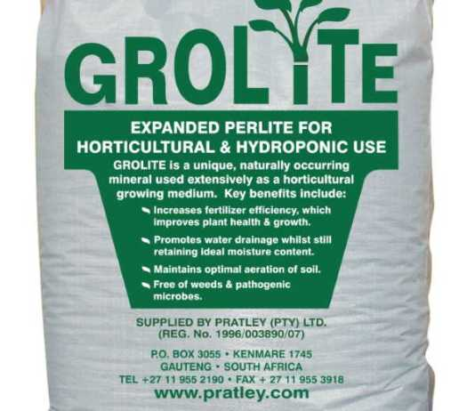 Perlite is the new way to grow