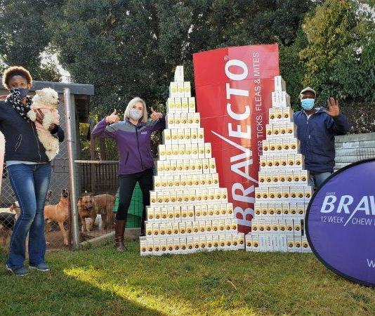 More vulnerable cats and dogs get tick and flea protection through generous #BravectoCares campaign
