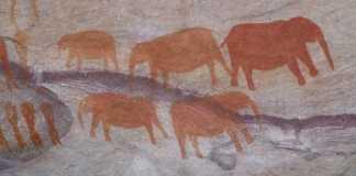 Bushman Rock Art South Africa