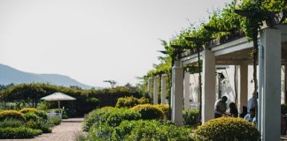 Avondale Wine Estate (Paarl) opens its private gardens this October