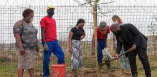 Hyde Park Corner donates trees for Arbour Week