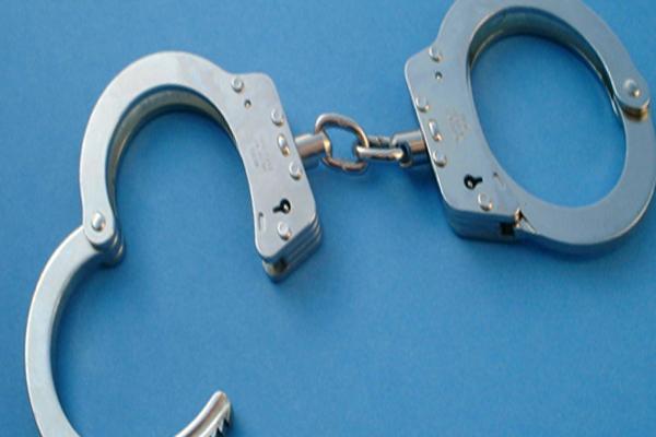 2 Gelvandale home invaders arrested