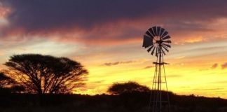Farm attack, couple overpowered, firearms robbed, Wasbank