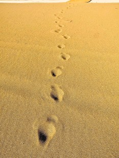 footprints © Southampton Old Lady