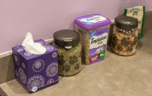 Kitty treats like catnip and snacks are available at the South Austin Cat Hospital.