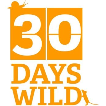 30days1