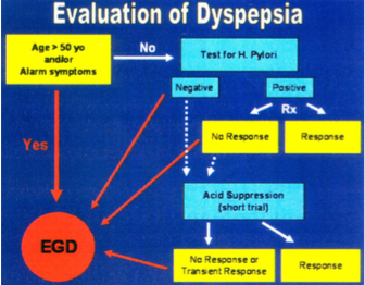 dyspepsia | SOUTHCOAST DIGESTIVE DISEASES CENTRE