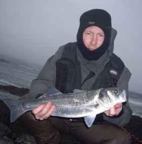 A Bass caught from South Devon