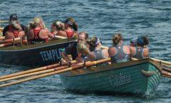 Paignton Regatta Rowing 2019
