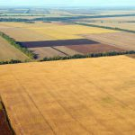 Plowed field and other farmland-2