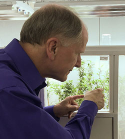 APHIS Administrator Kevin Shea visits the FDACS biocontrol laboratory in Dundee, FL