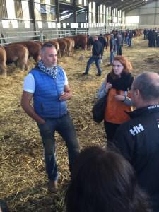 Nicolas Restituito giving tour of Bernard Coudert's Limousin cattle farm.