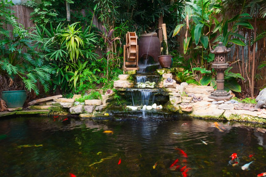 pond garden farm