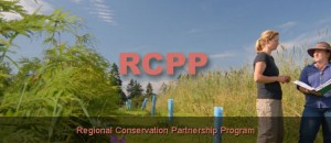 conservation proposals rccp