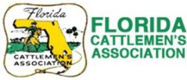 Florida legislative senate bill budget