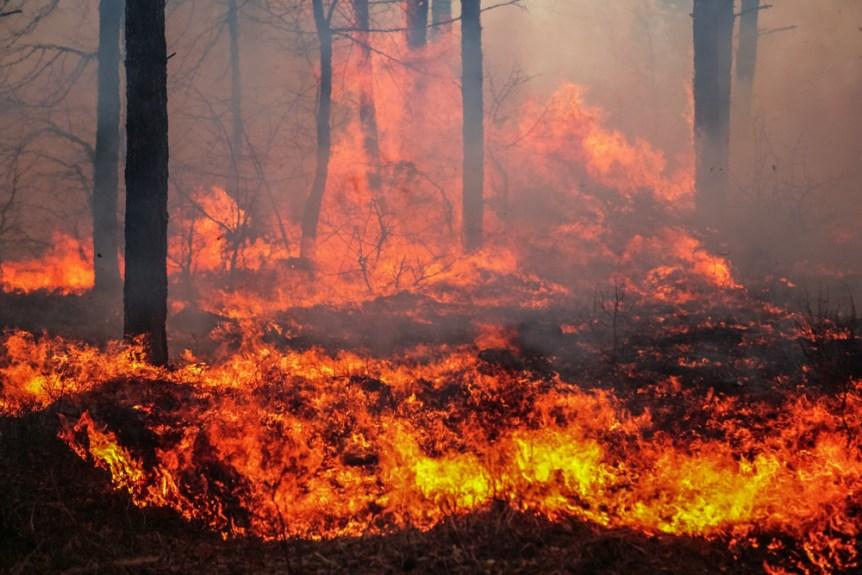 threat wildfire florida