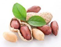 peanut profitability award