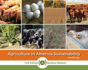 America Sustainability Report
